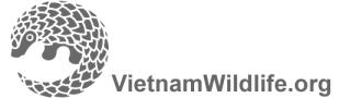VietnamWildlife.org-logo-grey-transparent.jpg